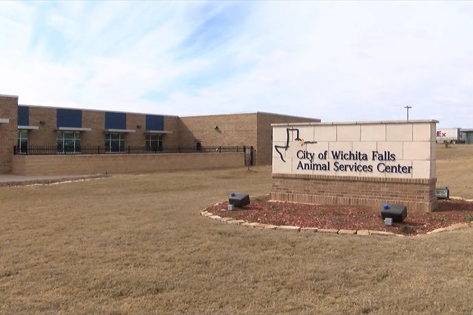 Wichita Falls Animal Services Center_-8611771668700639894