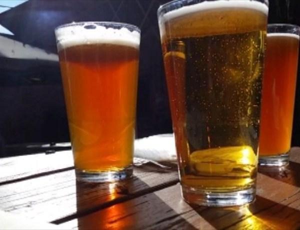 Bacteria in Beer_ _-7102819403329482985