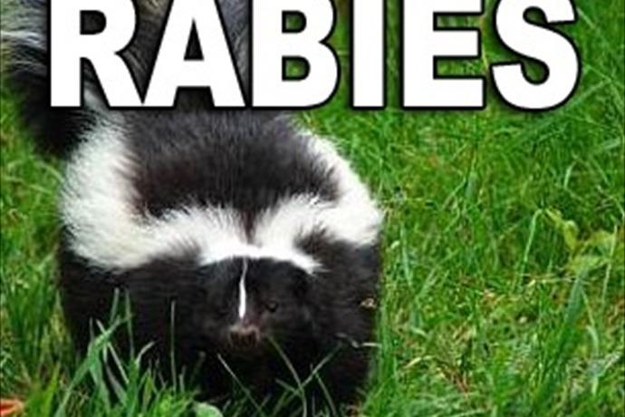 Skunk Rabies_-3810247643806544650