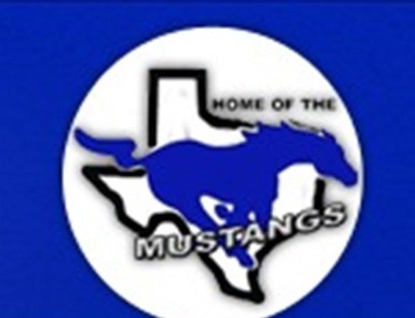 City View Mustangs_-3363562711612371413