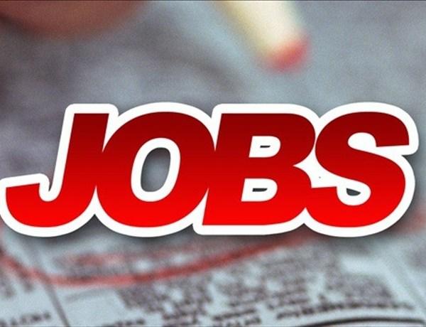 Jobs_-3017168027612197373