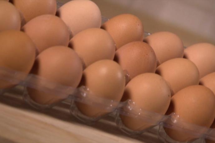 eggs_-8787949252740429733