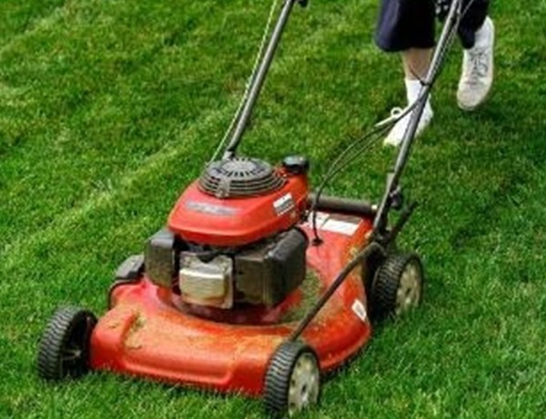 Lawn Mower_7814870102050359986