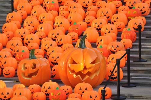 2016 October JackOLanters_1478015138497.jpg
