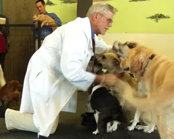 Health Cast- Pet Diseases Can be Spread to Humans_09813145