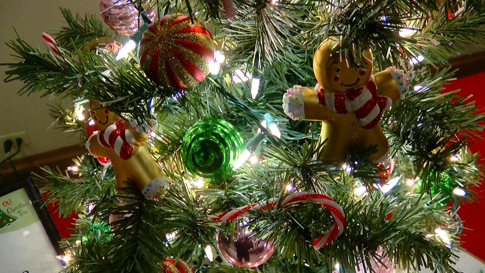 oh christmas tree_1542332082785.jpg.jpg