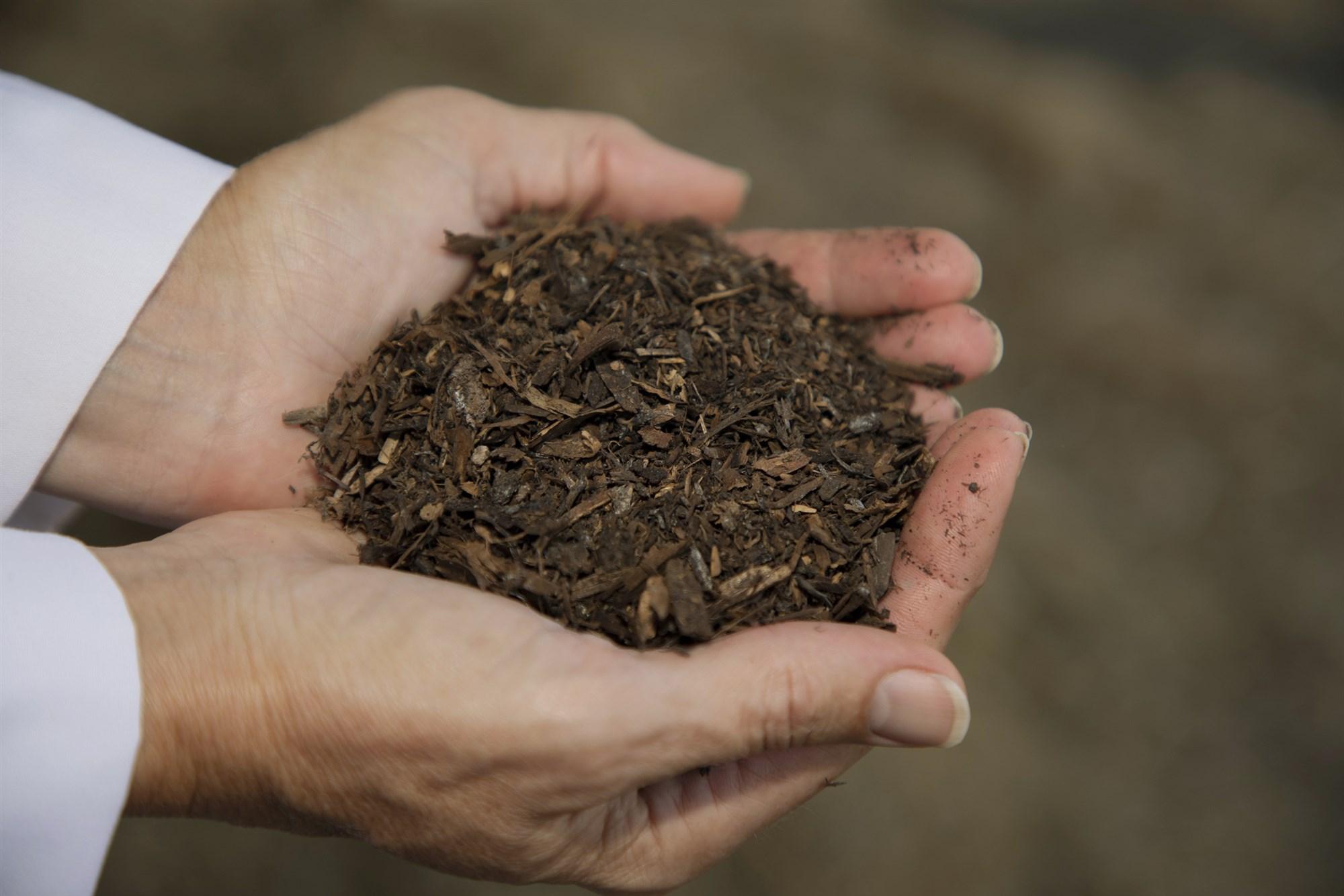 181221-recompose-compost-mn-1240_28d9822348696ec9061eb548d47496df.fit-2000w_1546118059895.jpg