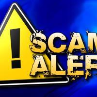 scam alert 1_1542738729357.JPG.jpg