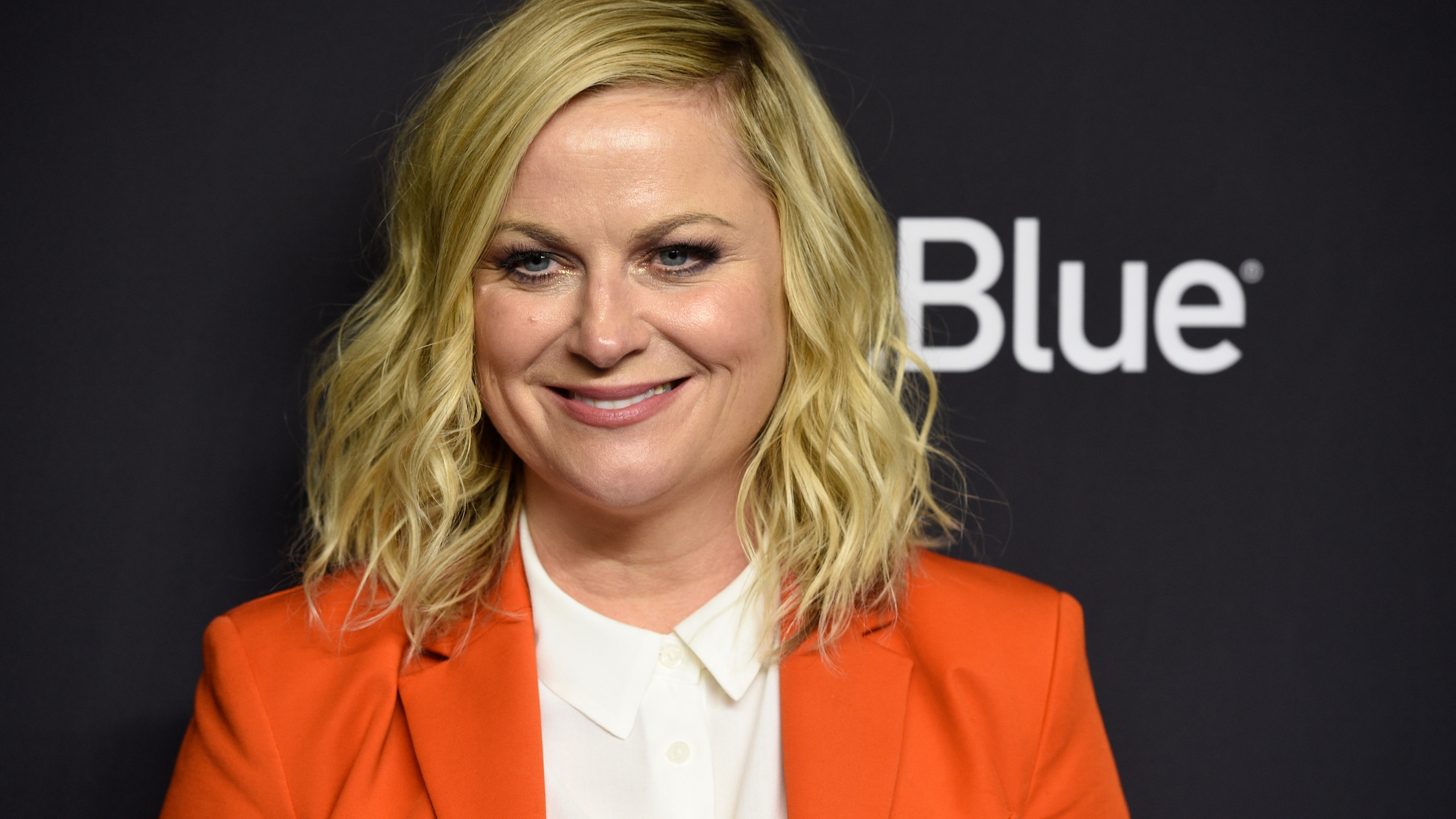 Amy Poehler, MARCH 21, 2019 FILE PHOTO